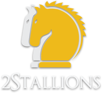 About logo 2Stallions